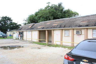 Lafayette LA Commercial For Sale: $300,000