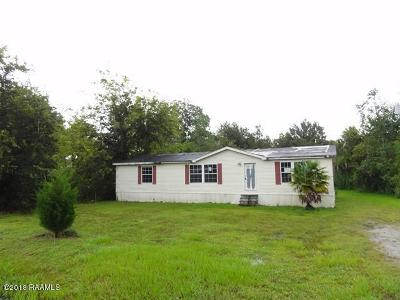 New Iberia Single Family Home For Sale: 4715 Avery Island Road