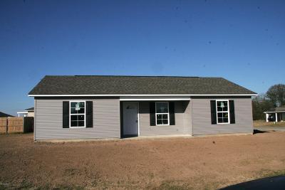 Carencro Single Family Home For Sale: 206 Oak Springs Lane