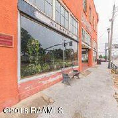 Commercial For Sale: 319 Pere Megret Street