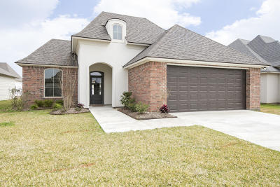 Broussard Single Family Home For Sale: 207 Old Road Drive