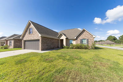 Youngsville Single Family Home For Sale: 100 Peak Valley Street