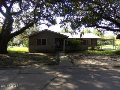 Single Family Home For Sale: 531 Pecan Street