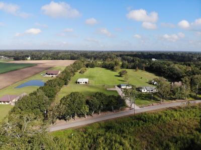 St. Martinville Single Family Home For Sale: 1263 True Friend Road