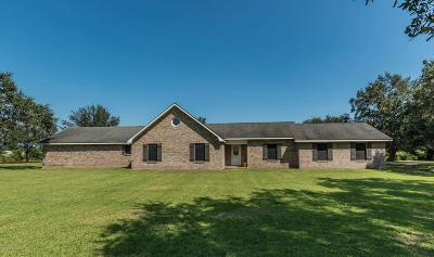 New Iberia Single Family Home For Sale: 615 Ed Broussard Road