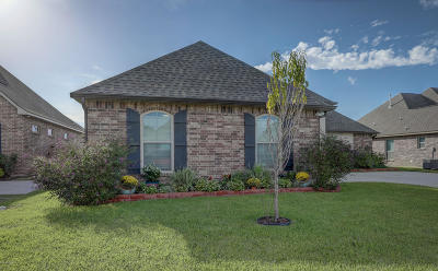 Youngsville Single Family Home For Sale: 118 Chemet Road