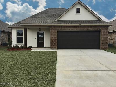Youngsville Single Family Home For Sale: 502 Gray Birch Loop