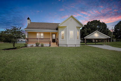 Youngsville Single Family Home For Sale: 6716 Youngsville Road