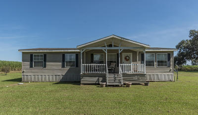 Iberia Parish Single Family Home For Sale: 4416 Valery Road