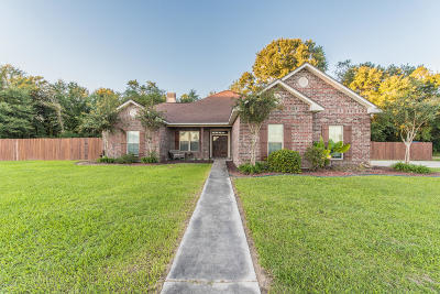 Carencro Single Family Home For Sale: 100 Antler Drive