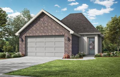 Lafayette Single Family Home For Sale: 122 Anatole Drive