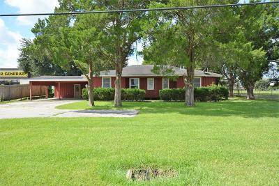 Rayne Single Family Home For Sale: 5287 Mire Hwy