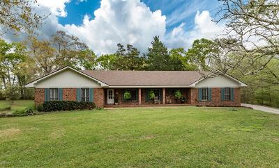 St Martinville, Breaux Bridge, Abbeville Single Family Home For Sale: 8534 River Road Road