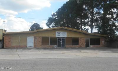 New Iberia Commercial For Sale: 502 S Landry Drive