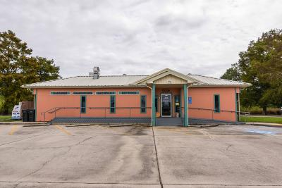 New Iberia Commercial For Sale: 7711 Weeks Island Road