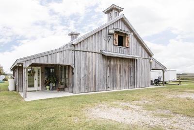 Duson Single Family Home For Sale: 614 La Maison Road