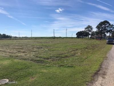 Vermilion Parish Residential Lots & Land For Sale: 4337 Curtis Landry Lane