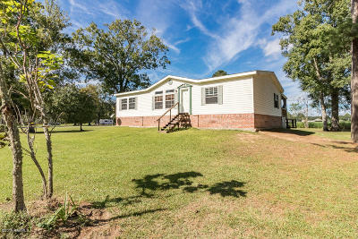 St. Martinville Single Family Home For Sale: 1035 Schwing Road