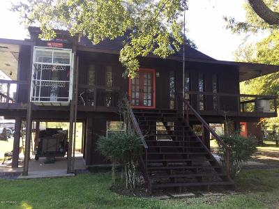 Port Barre Single Family Home For Sale: 123 Spruce Street