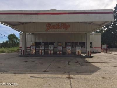 St Landry Parish Commercial For Sale: 372 Country Ridge Road