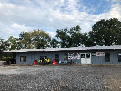 St Landry Parish Commercial For Sale: 16566 Hwy 190