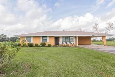 Breaux Bridge Single Family Home For Sale: 1240 Nina Hwy