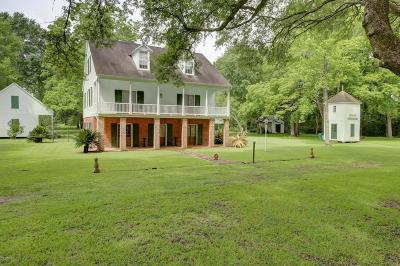 Arnaudville Single Family Home For Sale: 1862 Bushville