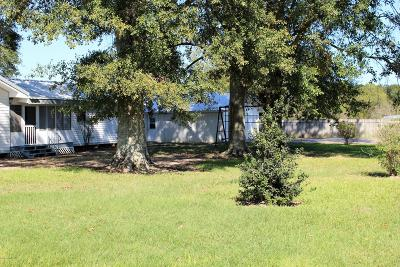 Mamou Single Family Home For Sale: 1005 Brangus Road