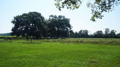 St Landry Parish Farm For Sale: 221 Apple Tree Lane