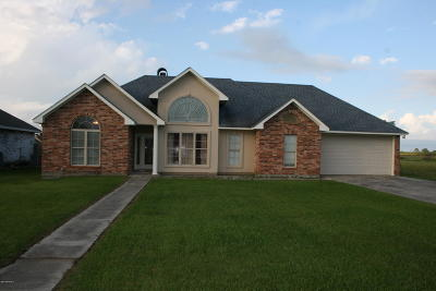 St Martinville, Breaux Bridge, Abbeville Single Family Home For Sale: 107 Ollie Drive