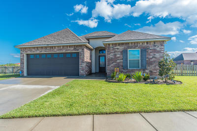 Meadows Bend Lakes Single Family Home For Sale: 300 Claystone Road