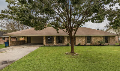 Lafayette  Single Family Home For Sale: 305 Camino Real Road