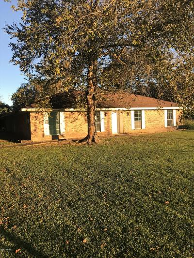 Youngsville Single Family Home For Sale: 102 Elie Drive
