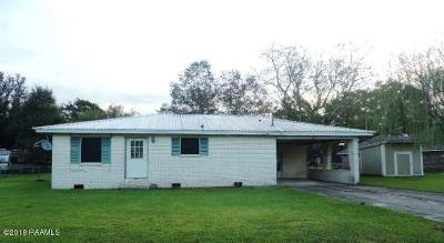 Breaux Bridge Single Family Home For Sale: 307 Timic Drive