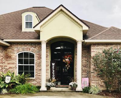 St Martinville, Breaux Bridge, Opelousas Single Family Home For Sale: 227 Bordelais Drive