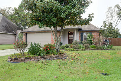 Youngsville Single Family Home For Sale: 138 Country Village