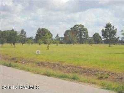 St Martinville, Breaux Bridge, Abbeville Residential Lots & Land For Sale: Hwy 167
