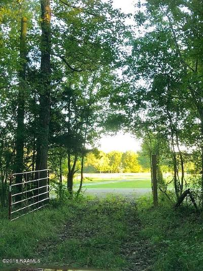 St Landry Parish Residential Lots & Land For Sale: Tbd Hwy 742