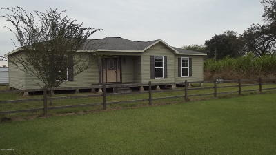 Jeanerette Single Family Home For Sale: 3416-A Patoutville Road