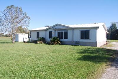 Duson Single Family Home For Sale: 313 Rustic Lane