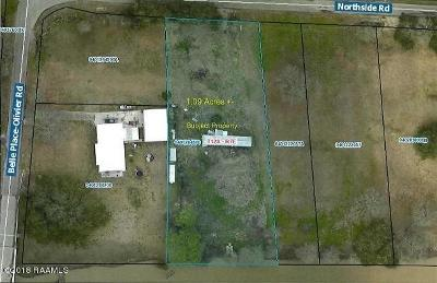 Iberia Parish Residential Lots & Land For Sale: 4204 Northside Road