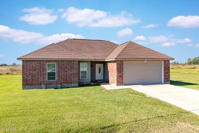 Abbeville  Single Family Home For Sale: 11014 Revelation Drive