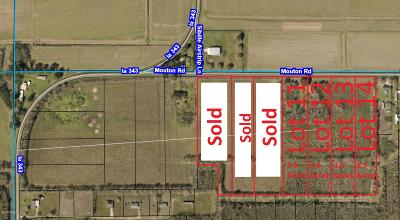 St Landry Parish Farm For Sale: Tbd Mouton Rd. Lots 8-14