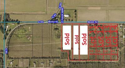 Farm For Sale: Tbd Mouton Rd. Lot 14