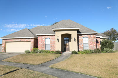 Copper Meadows Phase Ii Single Family Home For Sale: 206 Meadow Lake Drive