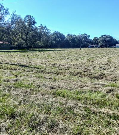 Lafayette Residential Lots & Land For Sale: 00 Moss Street