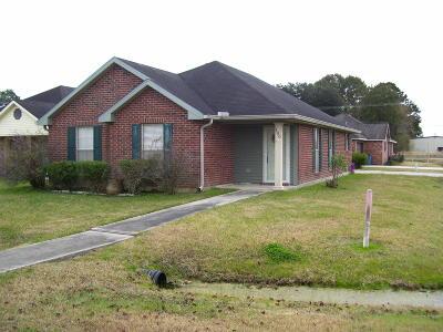 Duson Single Family Home For Sale: 100 Desert Storm Drive