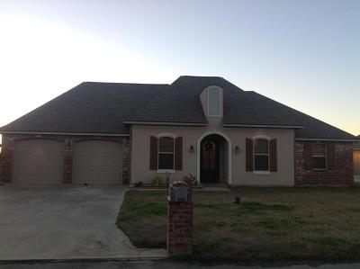 St Martinville, Breaux Bridge, Opelousas Single Family Home For Sale: 239 Christian Point Drive