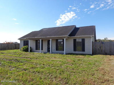 Franklin Single Family Home For Sale: 272 Cane Road