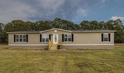 St Martinville, Breaux Bridge, Opelousas Single Family Home For Sale: 260 Hwy 357